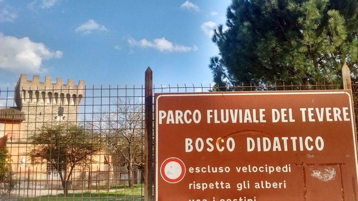 Bosco Didttico Ponte Felcino