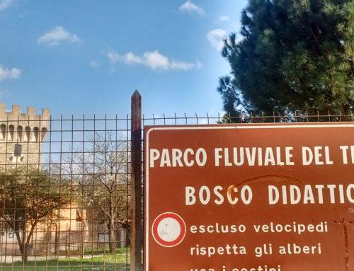 Il Bosco Didattico