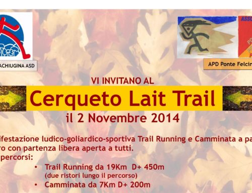 1° Querceto Light Trail