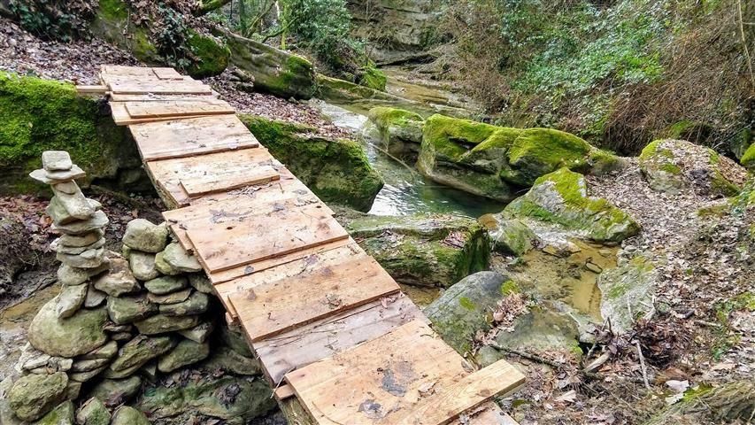 5° Querceto Trail - Last Check Track