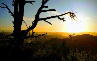 6 Querceto Trail - Tramonto abbazia